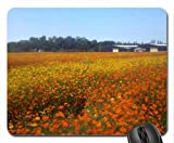 Orange cosmos flower fields Mouse Pad, Mousepad (Fields Mouse Pad)