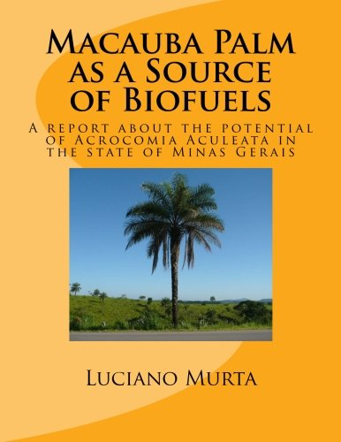 Macauba Palm as a Source of Biofuels: The potential of Acrocomia Aculeata in the state of Minas Gerais
