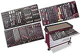 Assistent Werkstatt mit 8 Schubladen 228 Werkzeuge HIGHTECH-KRAFTWERK EVA3 LARGO