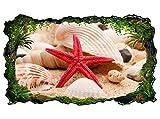 3D Wandtattoo Seestern Muschel Strand Meer Ozean Bild selbstklebend Wandbild sticker Wohnzimmer Wand Aufkleber 11H430, Wandbild Größe F:ca. 97cmx57cm