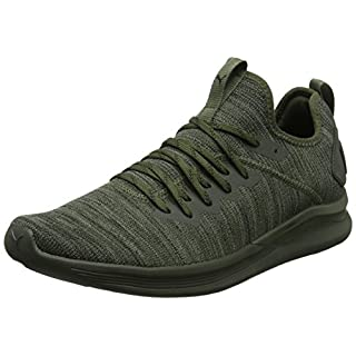 Puma Herren Ignite Flash Evoknit Cross-Trainer, Braun (Forest Night-Castor Gray Black), 40.5 EU