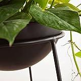 Vasi da fiori in ferro moderno minimalista nordico soggiorno balcone fiore piante verdi verde in vaso cremagliera del fiore ( Dimensione : S )