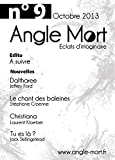Angle Mort numéro 9 (French Edition)