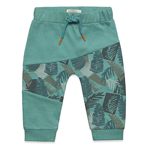 ESPRIT KIDS Baby-Jungen Knit Pants Hose, Grün (Soft Green 520), Herstellergröße: 92 Kind Knit Pant