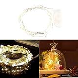 LEDMOMO 20 luci della stringa del filo di rame di LED per la decorazione di cerimonia nuziale di Natale, cella a pulsante 6.5ft (luce bianca calda)