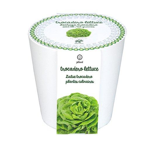 Herstera Garden 13701023 - Pot prêt à Pousser de Laitue Trocadero, 12 x 12 cm, Blanc