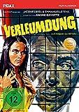 Verleumdung (Les risques du métier) / Mit dem Prädikat WERTVOLL schockierender Thriller mit Jacques Brel (Pidax Film-Klassiker)