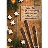 Wintertraeume - arrangiert für drei Blockflöten [Noten/Sheetmusic]