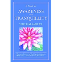 A Guide To Awareness And Tranquillity (English Edition)