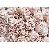Fototapete Blumen - ALLE BLUMENMOTIVE auf einen Blick ! Vlies PREMIUM PLUS - 350x245 cm - ROYAL ROSE - Blüte Liebe Blumen - no. 189