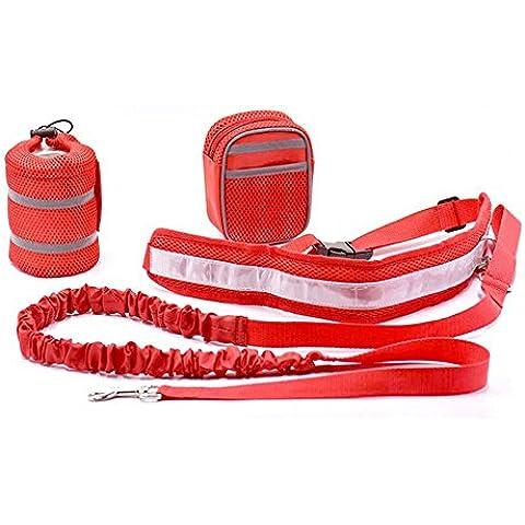 Pet Guinzaglio Set Retrattile, Badalink Running Jogging Cinghia con il Cane Animali Domestici Collare Corda Dog Rope (Rosso) - Oro Lungo Diamante Set