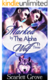 Marked By The Alpha Wolf: Book Three (Braving Darkness 3)