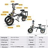J&X JX SMLRO Elektrofahrrad mit Zwei Akkus Elektrisches Dreirad für Fahrrad, 14 Zoll, 250 W, 36 V, 14,5 A, H Li-Batterie für Fahrrad, Dreirad, Scooter für Erwachsene/Kinder Zusammenklappbar, 1 Sek.