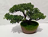 #5: Artificial Bonsai Trees Potted Plants indoor Evergreen Decor