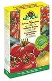 Neudorff 00154 Azet Tomaten Dünger, 1 kg