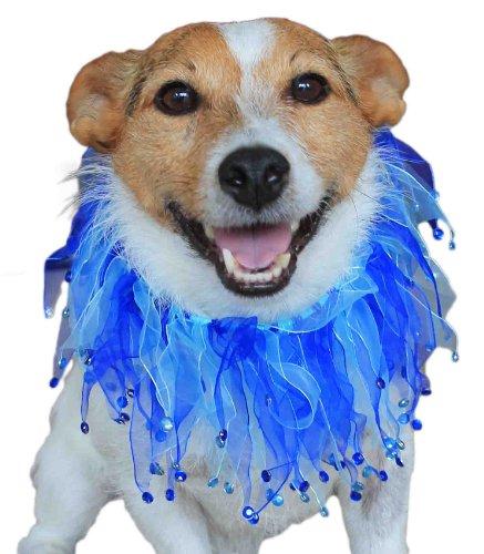 Dogs & Co. Hunde Halsband–Party Rüschen. Für einen Touch von Glamour & Fun. Toll für Hochzeiten, Weihnachten und Fancy Kleid. Blau. ()