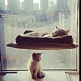 Katze Fenster montiert Katze Bett Fenster Kitty PerchStrong und Durable Cat Hängematte