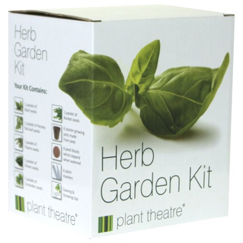 herb-garden-seed-kit-gift-box-6-different-herbs-to-grow