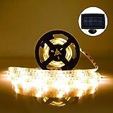 LED Streifen Warmweiß Lichterkette 5M länge Wasserdicht Lampe Streifen Ideale Dekoration-Beleuchtung mit 2 Modi Schöne Lichtband für Feier Hochzeit Schaukasten Garten Haus Auto Party