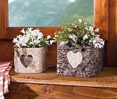 Idea Regalo - Vaso per piante