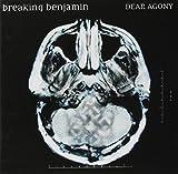 Songtexte von Breaking Benjamin - Dear Agony