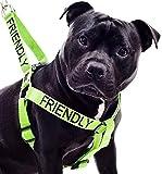 Freundlich Grün Farbe Coded Nylon L-XL Non-Pull-Hundegeschirr (bekannt als Freundlich) die Unfallgefahr Durch Warnung Sonstige Ihren Hund im Voraus