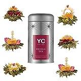 """Yang Chai Teeblumen Geschenkset""""Excite"""" - Tee Geschenk Flower Tea 6 versch.Teeblumen in Metalldose MIT Teeblumenhalter -"""