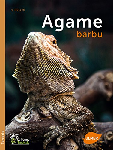 L'Agame barbu