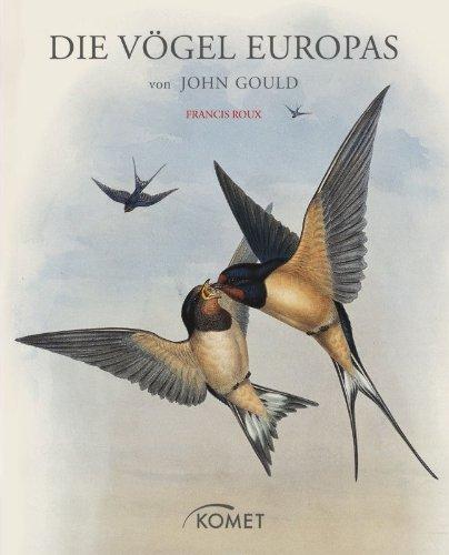 John Gould Gould Vogel (Die Vögel Europas von John Gould)