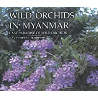 Wild Orchids in Myanmar Vol. 1: Last Paradise of Wild Orchids (Wild Orchids in Myanmar: Last Paradise of Wild Orchids) by Tanaka, Yoshitaka, Htun, Nyan, Yee, Tin Tin (2008) Hardcover