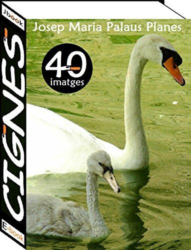 Cignes (40 imatges) (Catalan Edition)
