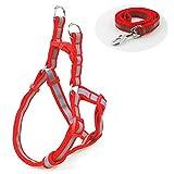 B-JOY Reflektierendes Klassisch Einfarbiges Hundegeschirr Gepolstertes Hundegeschirr, für kleine hunde (Rot)