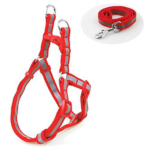 b-joy-reglable-harnais-pour-chien-reflechissant-step-in-harnais-pour-animaux-corps-chien-harnais-ave