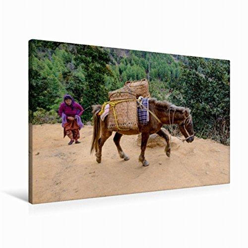 Leinwand Warentransport zum Taktshang Lhakhang (Tigernest-Kloster) bei Paro, Bhutan 90x60cm, Special-Edition Wandbild, Bild auf Keilrahmen, Fertigbild auf hochwertigem Textil, Leinwanddruck, kein Poster