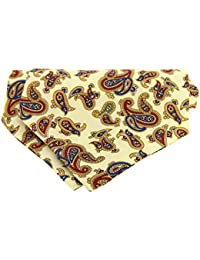 Amazon.es: corbata paisley - Soprano / Corbatas / Corbatas ...