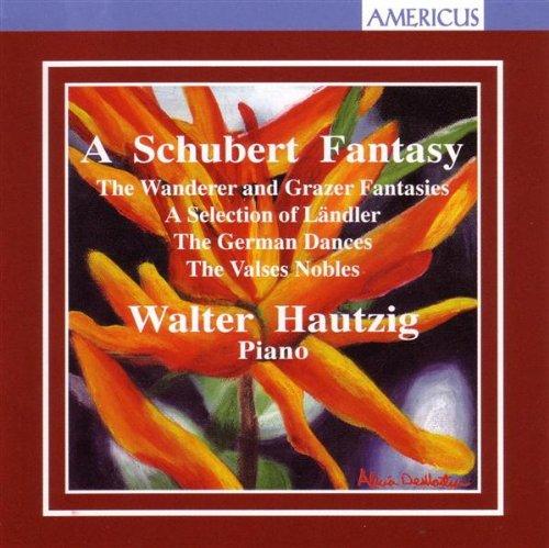 Schubert Fantasy