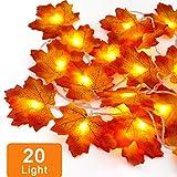 Herbst Dekoration Blätter Lichterketten, 3M 20-Lichtern Ahornblatt Lichterketten, Herbst Blättergirlande für Thanksgiving Halloween Weihnachten Balkon Terrasse Wohnzimmer (1 x 20 LED-Licht)