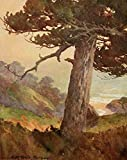 A4 Photo Morgan Mary DeNeale 1868 1948 On Sunset Highways 1921 Gate of Val Paiso Canyon Monterey Print Poster
