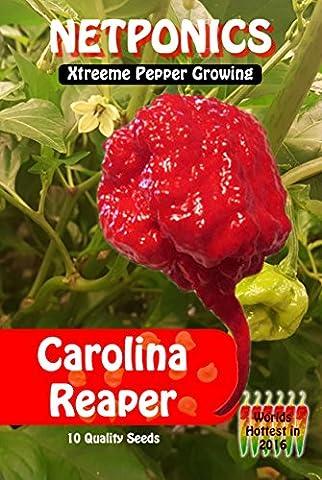 Lot de 10graines de piments extra forts 10 Carolina Reaper