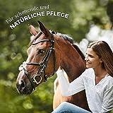 AniForte kaltgepresstes Leinöl 5 Liter- Naturprodukt für Hunde, Katzen & Pferde - 6