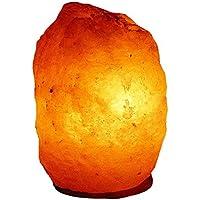 Sal Lámpara de sal 2156- lámpara 2–3KG incl. Especial bombilla südlich del Himalaya (2156)