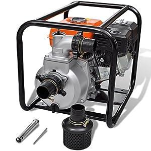 Bomba de Agua con Motor de Gasolina 80 mm Conexión 6,5 HP