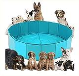 DAN Piscina Plegable Del Baño Del Animal Doméstico Del Perro, Bañera Plegable De La Piscina Del Animal Doméstico Del Perro Para Los Perros O Los Gatos