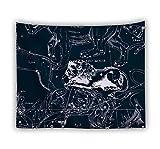 XIAOBAOZIGT Tenture Murale Motif d'impression Numérique 3D Ligne Lion Art Mural Paysage Décoration De La Maison Salon Décoration Chambre Dortoir 130×150Cm