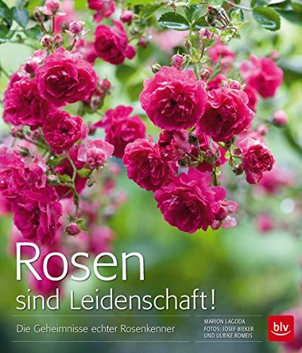 Rosen sind Leidenschaft!: Die Geheimnisse echter Rosenkenner (BLV)