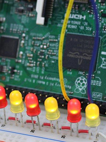 LEDs mit dem Raspberry Pi steuern