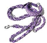 Viva Nature Handgemachtes Hunde-Halsband MIT Leine im Set/verstellbar 35-42 cm \ Paracord-PP-Flechtleine/Geflochten/Hund (Lila rostfrei)