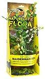 Zoo Med BU-42 Maidenhair Fern 30 cm Kunststoffpflanze zur Dekoration im Terrarium