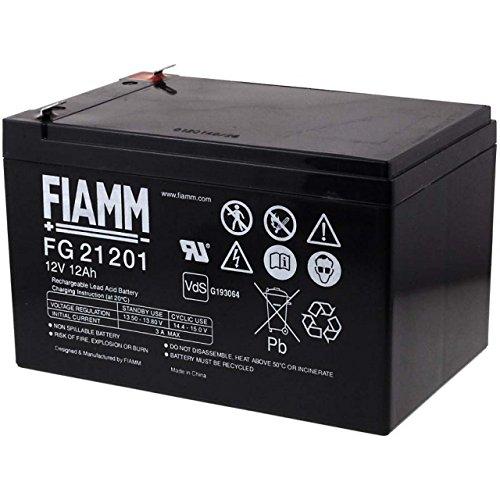 FIAMM Batteria ricaricabile da cambio per Peg Perego corrente di emergenza (USV) 12V 12Ah (della stessa costruzione 14Ah)