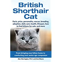 British Shorthair Cat: From bringing your kitten home to comforting your senior age companion (English Edition)